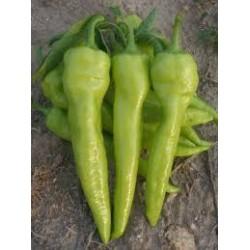 Пипер Албена семена 1 гр