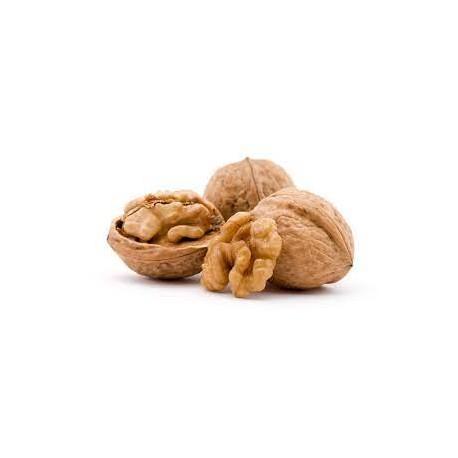 орех едроплоден